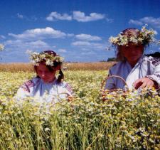 Święto Krainy Rumianku 12-13 czerwca
