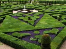 Współczesny tajemniczy ogród