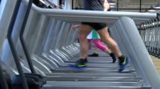 Jakimowicz: Fitness i siłownia to rewia mody