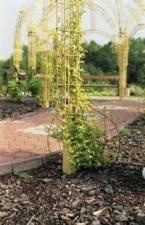 Architettura dei Giardini Piccolo
