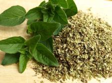 Olejek z oregano – właściwości i stosowanie