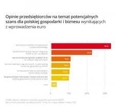 Wejście Polski do strefy euro w odczuciu małych przedsiębiorców