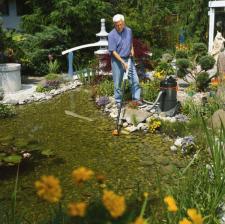 Aqua Garden in primavera
