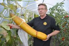 Największe warzywa w Polsce rosną na działce w Raciborzu
